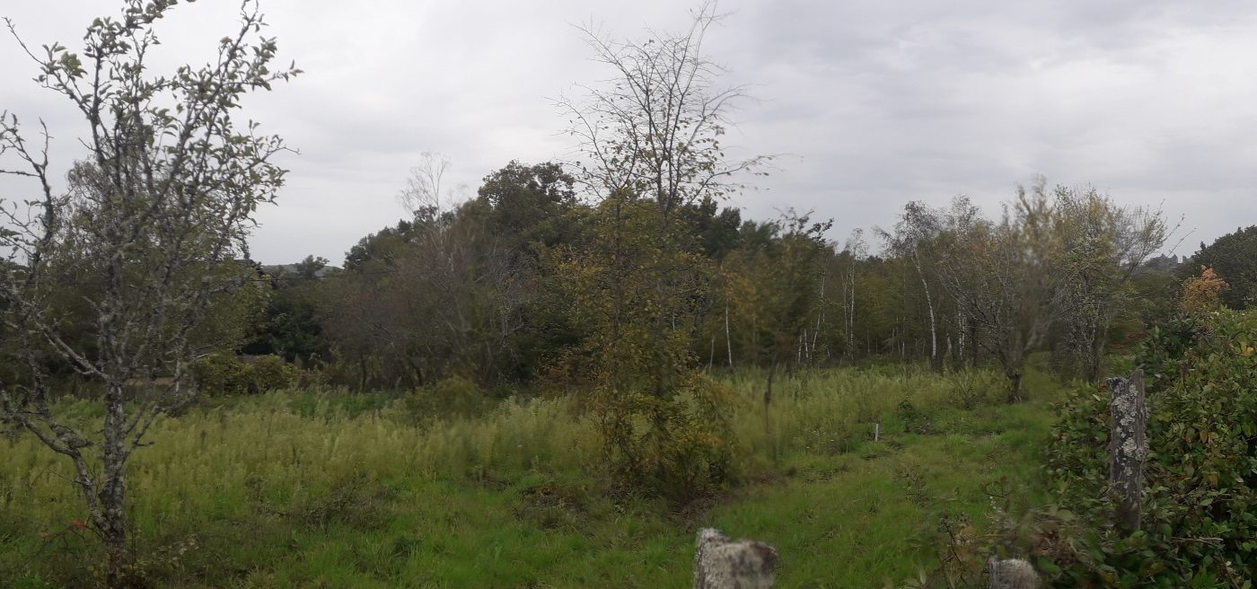 Terrain à Noailles