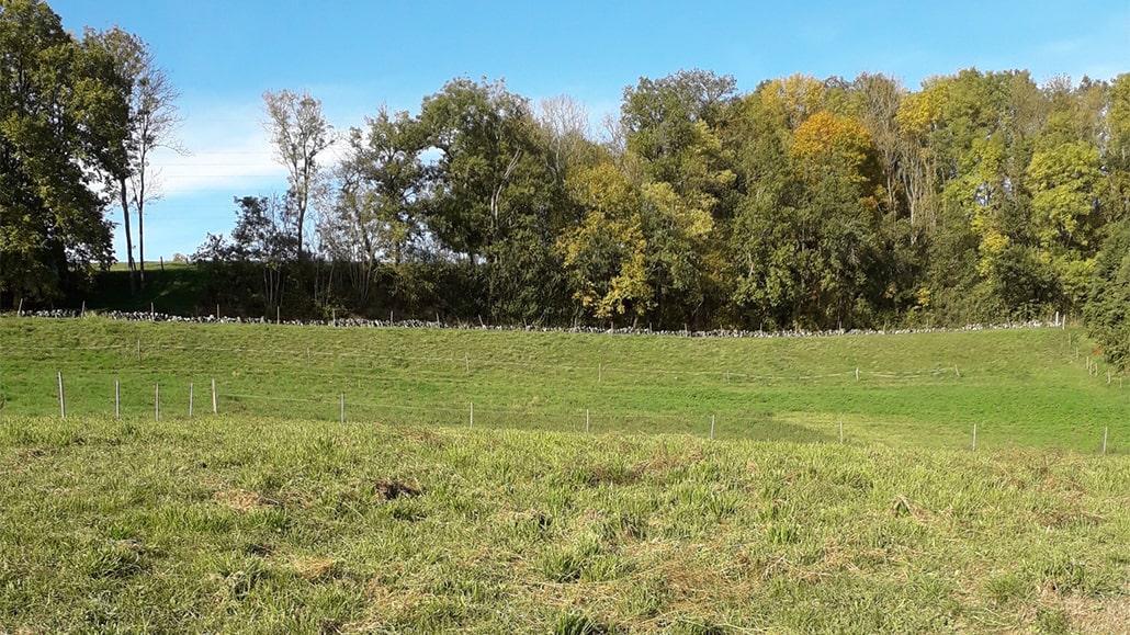Terrain à bâtir en Creuse